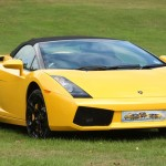 yellow car on grass