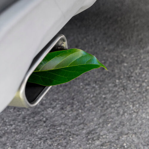 Car tailpipe with a green leaf coming out of it.